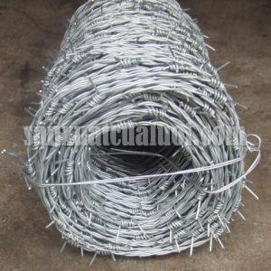 Hàng rào kẽm gai hình đinh Việt Thống